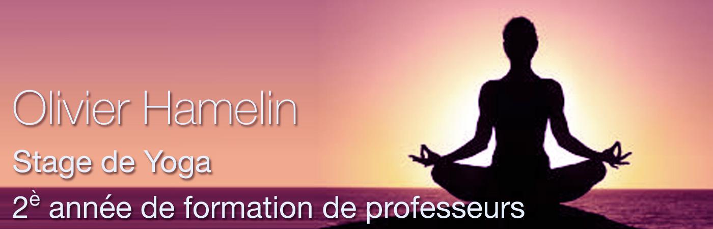 STAGE DE YOGA 2ème année de formation de professeurs Olivier Hamelin