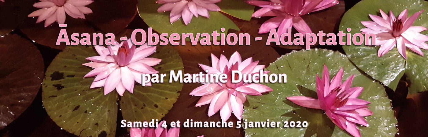 Formation de yoga, Āsana - Observation et Adaptation par Martine Duchon