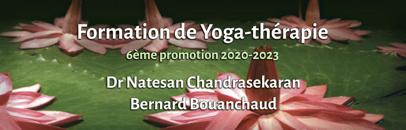 Formation de Yoga-thérapie sixième promotion 2020-2023 Dr Natesan CHANDRASEKARAN Bernard BOUANCHAUD